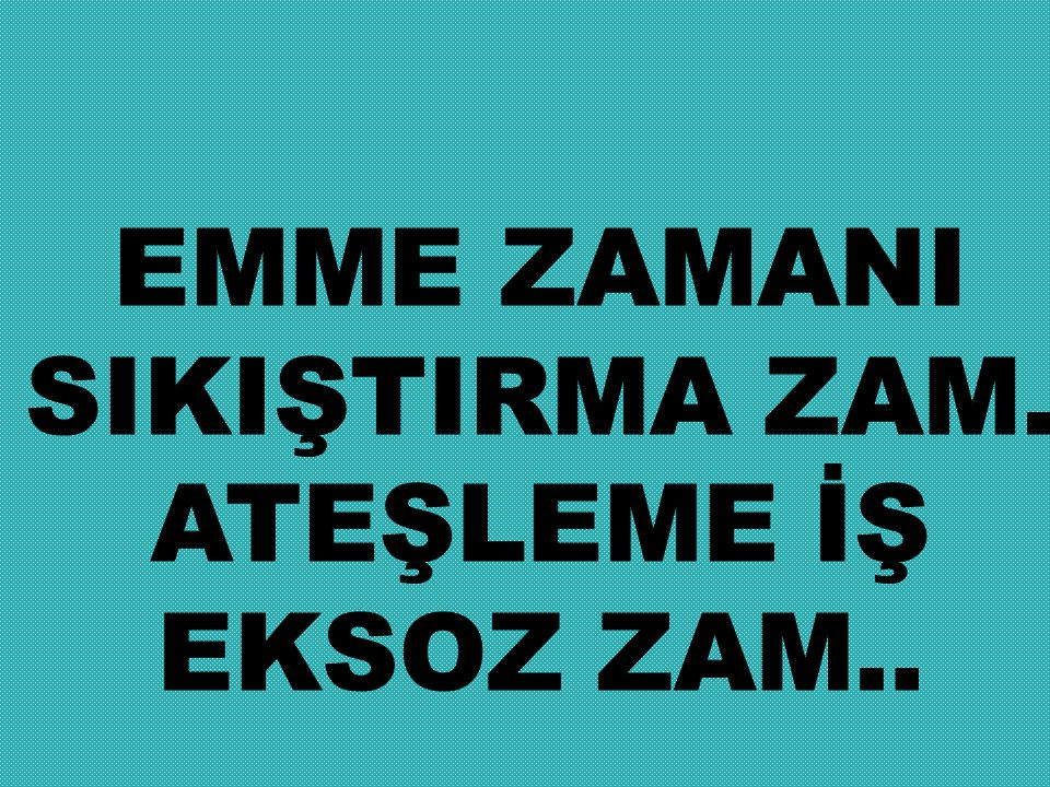 EMME ZAMANI SIKIŞTIRMA ZAM. ATEŞLEME İŞ EKSOZ ZAM..