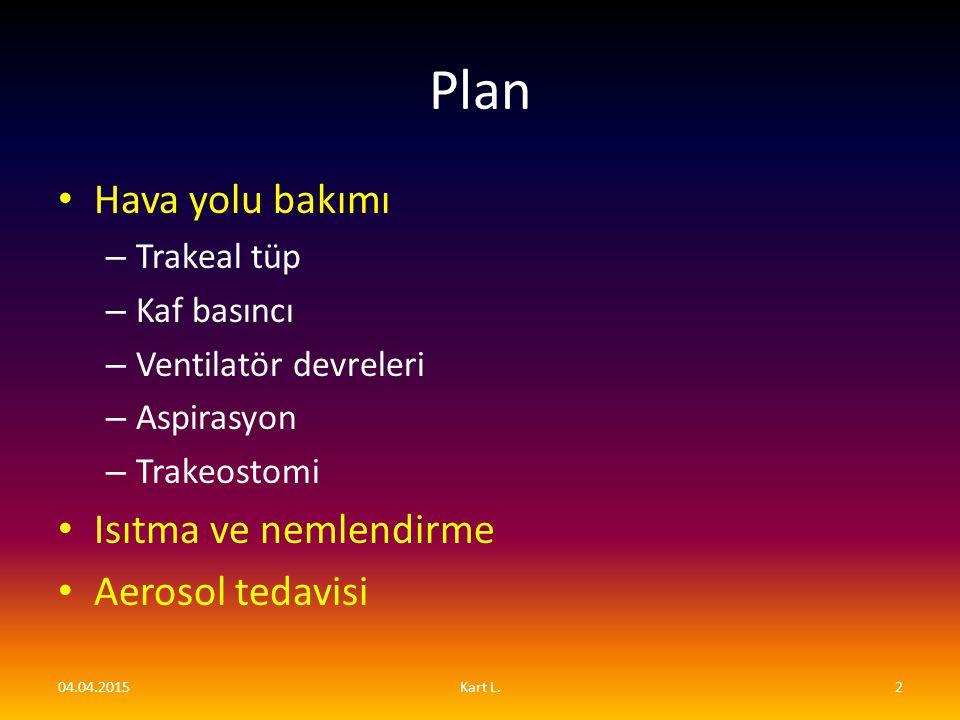 Plan Hava yolu bakımı Isıtma ve nemlendirme Aerosol tedavisi