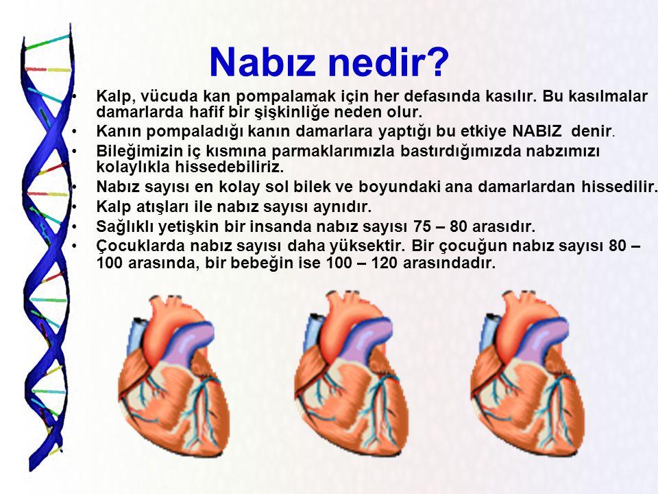 Nabız nedir Kalp, vücuda kan pompalamak için her defasında kasılır. Bu kasılmalar damarlarda hafif bir şişkinliğe neden olur.