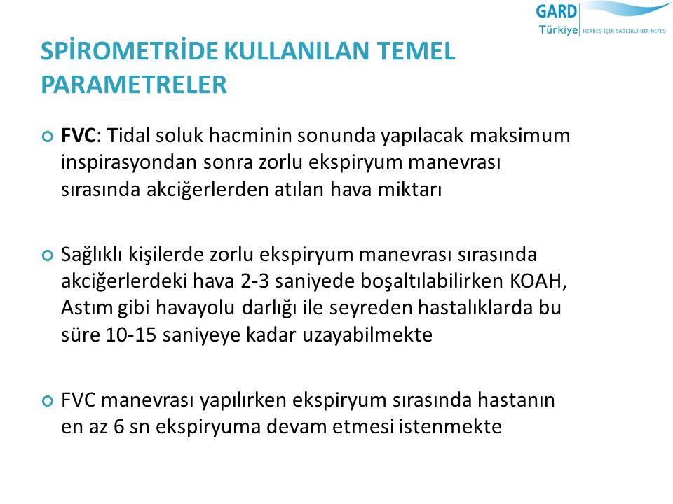 SPİROMETRİDE KULLANILAN TEMEL PARAMETRELER