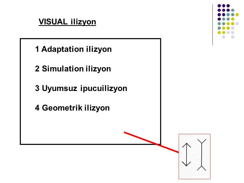 VISUAL ilizyon 1 Adaptation ilizyon 2 Simulation ilizyon 3 Uyumsuz ipucuilizyon 4 Geometrik ilizyon