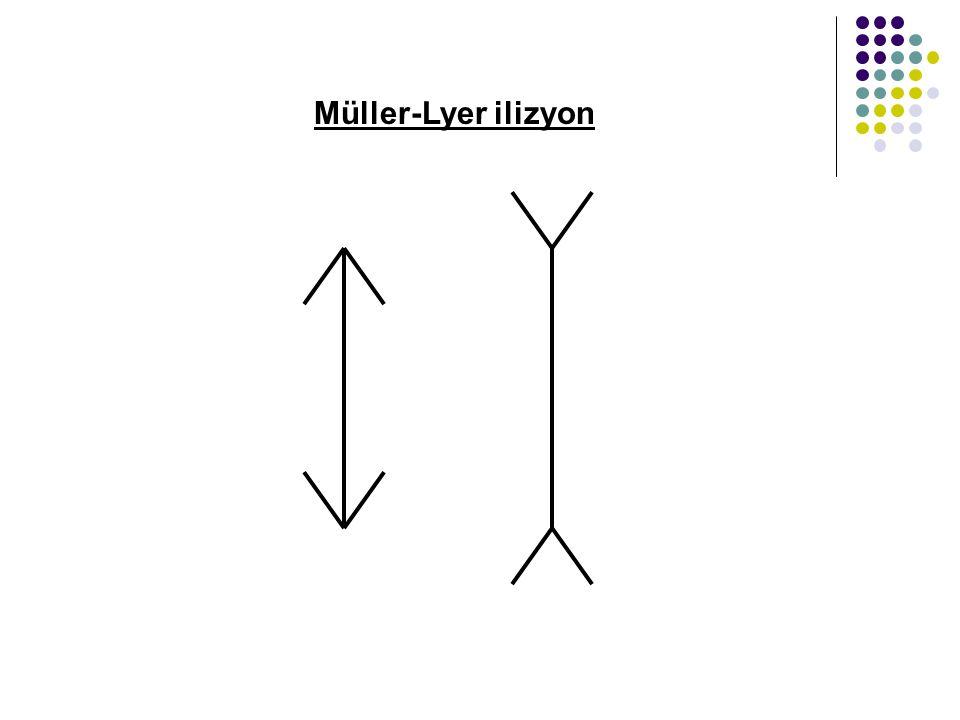 Müller-Lyer ilizyon
