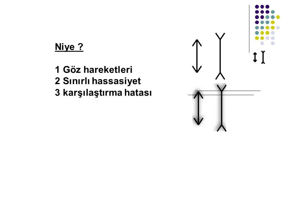Niye 1 Göz hareketleri 2 Sınırlı hassasiyet 3 karşılaştırma hatası