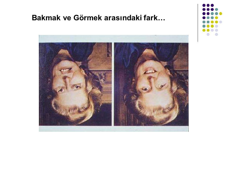 Bakmak ve Görmek arasındaki fark…