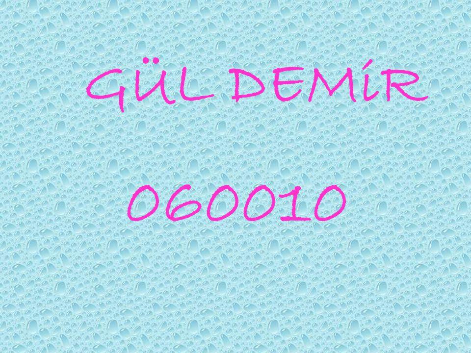 GÜL DEMiR 060010