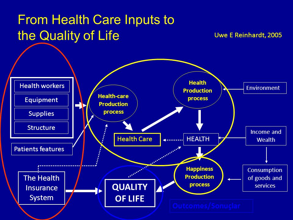 From Health Care Inputs to the Quality of Life