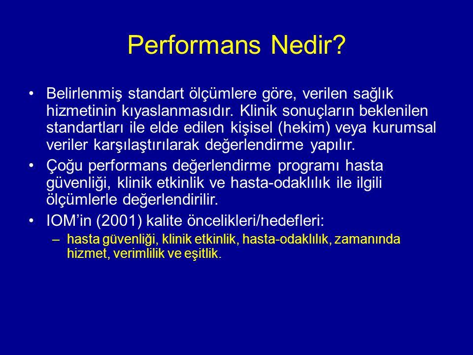 Performans Nedir