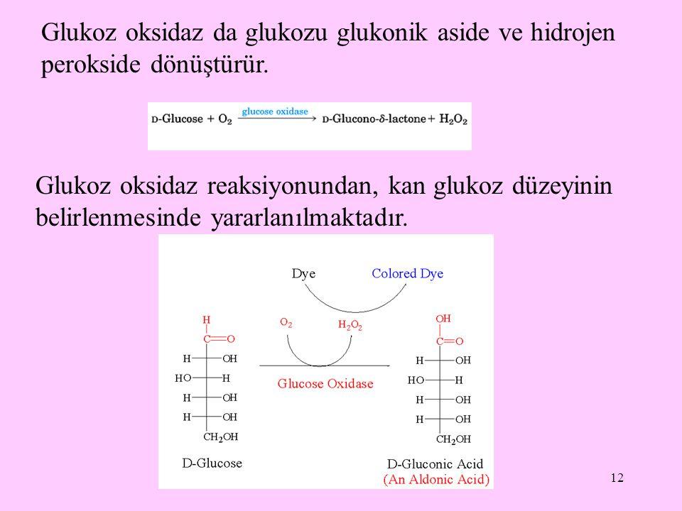 Glukoz oksidaz da glukozu glukonik aside ve hidrojen perokside dönüştürür.