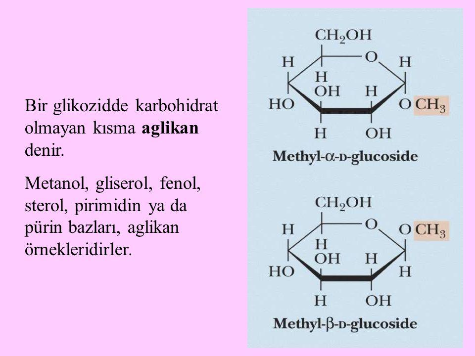 Bir glikozidde karbohidrat olmayan kısma aglikan denir.