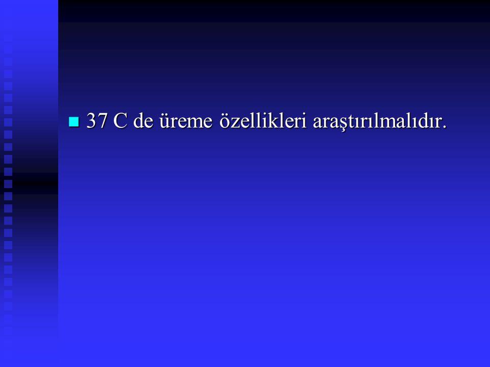 37 C de üreme özellikleri araştırılmalıdır.