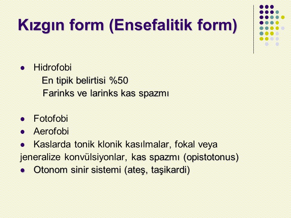 Kızgın form (Ensefalitik form)