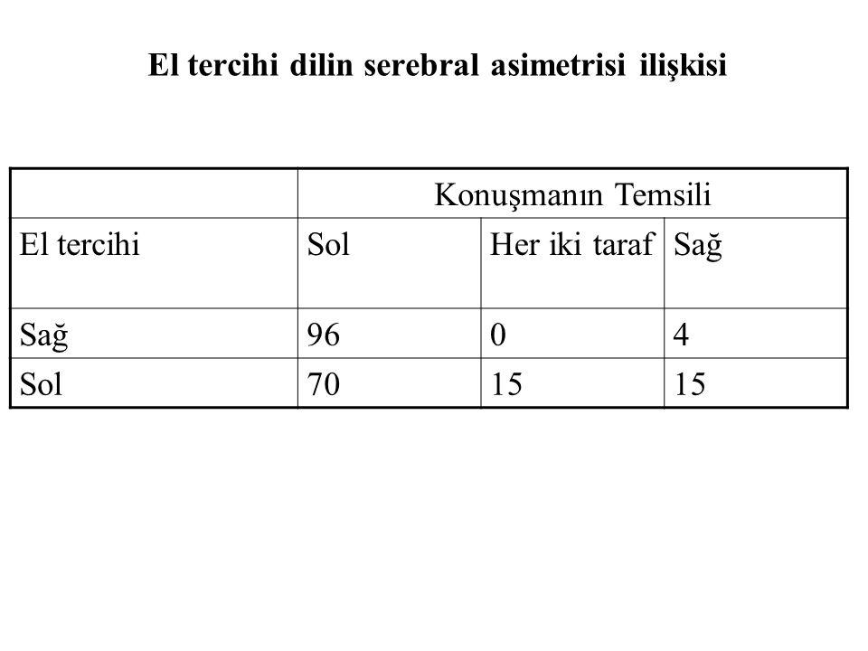 El tercihi dilin serebral asimetrisi ilişkisi