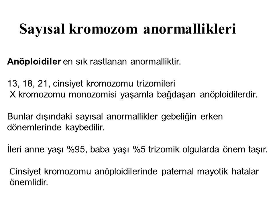 Sayısal kromozom anormallikleri