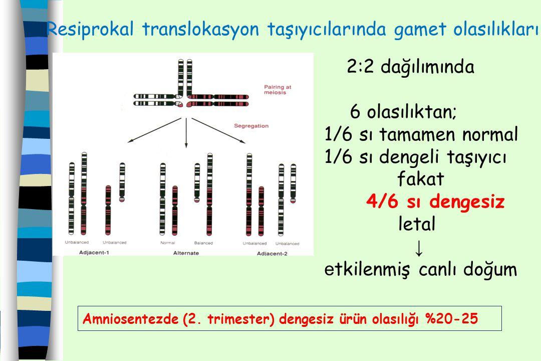 Resiprokal translokasyon taşıyıcılarında gamet olasılıkları