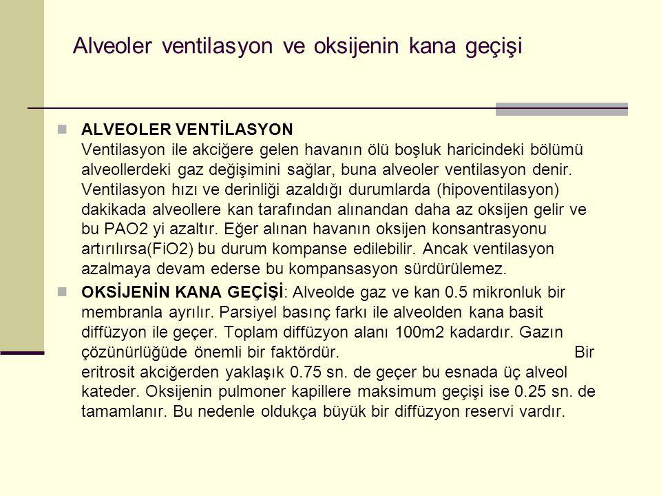 Alveoler ventilasyon ve oksijenin kana geçişi