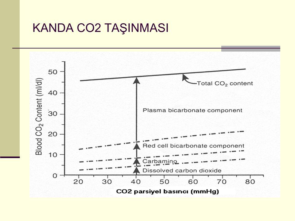 KANDA CO2 TAŞINMASI