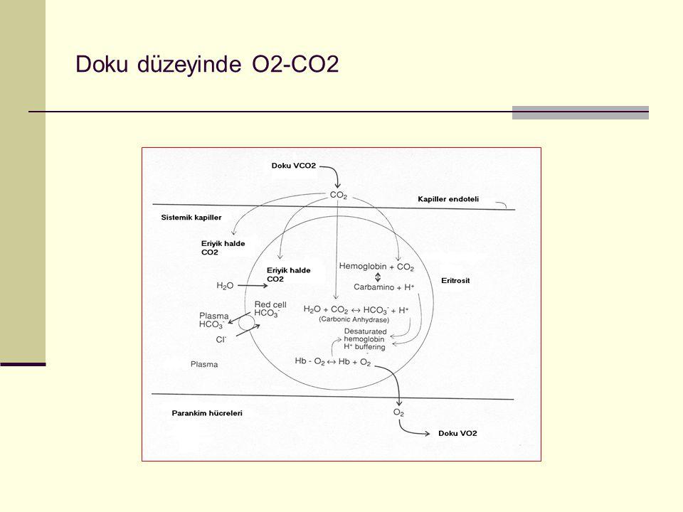 Doku düzeyinde O2-CO2