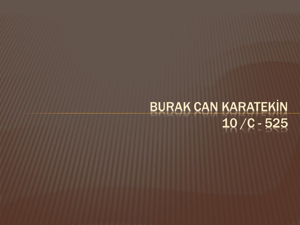 BURAK CAN KARATEKİN 10 /C - 525