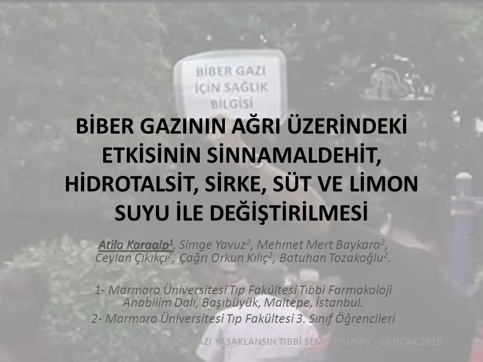 2- Marmara Üniversitesi Tıp Fakültesi 3. Sınıf Öğrencileri