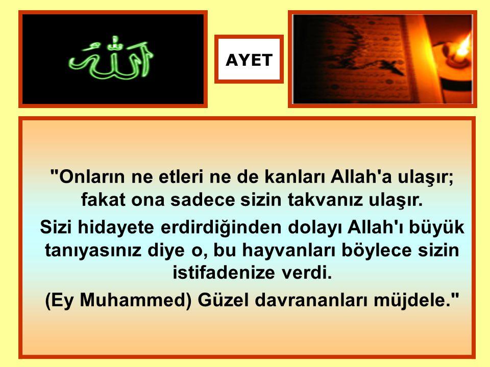 (Ey Muhammed) Güzel davrananları müjdele.