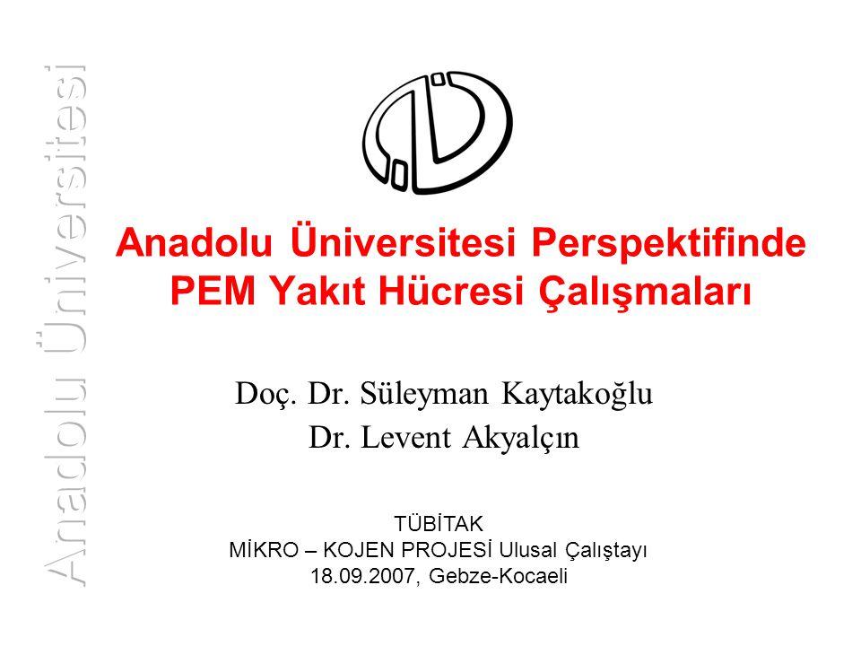 Anadolu Üniversitesi Perspektifinde PEM Yakıt Hücresi Çalışmaları