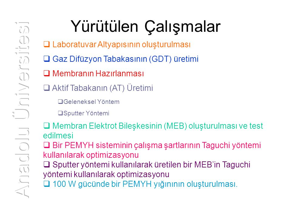 Anadolu Üniversitesi Yürütülen Çalışmalar