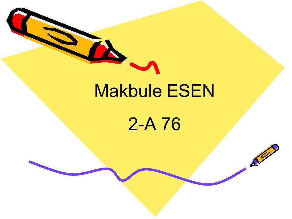 Makbule ESEN 2-A 76