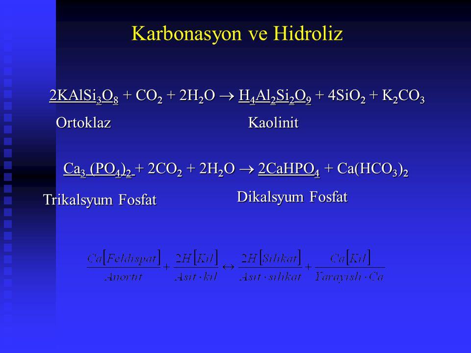 Karbonasyon ve Hidroliz