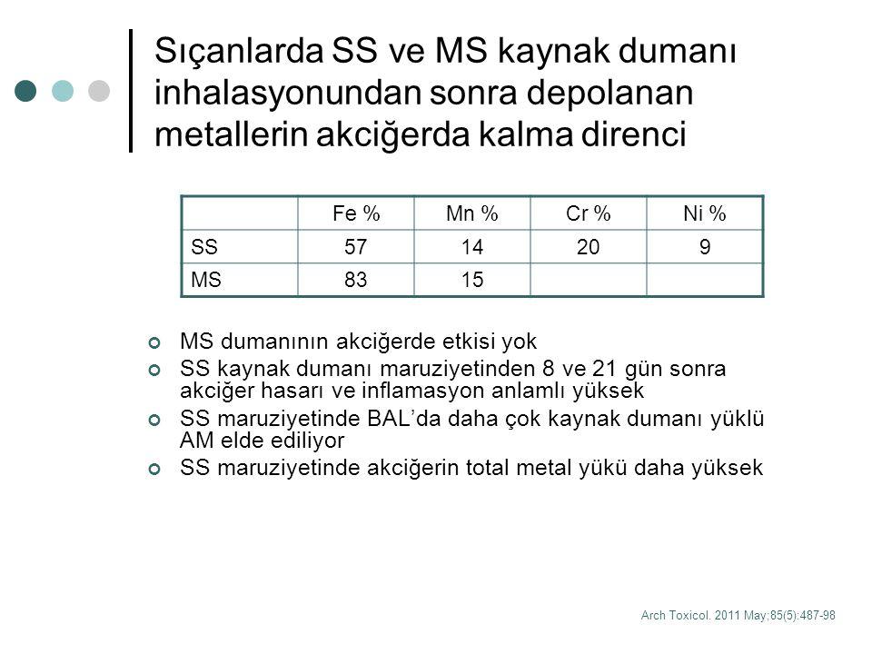 Sıçanlarda SS ve MS kaynak dumanı inhalasyonundan sonra depolanan metallerin akciğerda kalma direnci