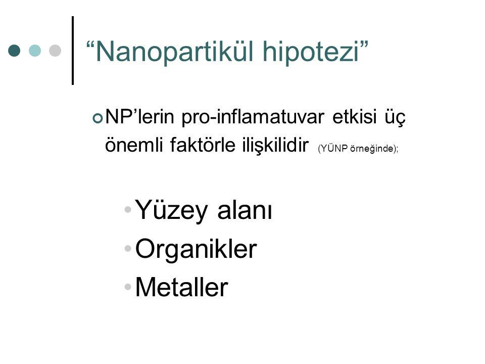 Nanopartikül hipotezi