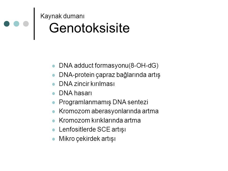 Kaynak dumanı Genotoksisite
