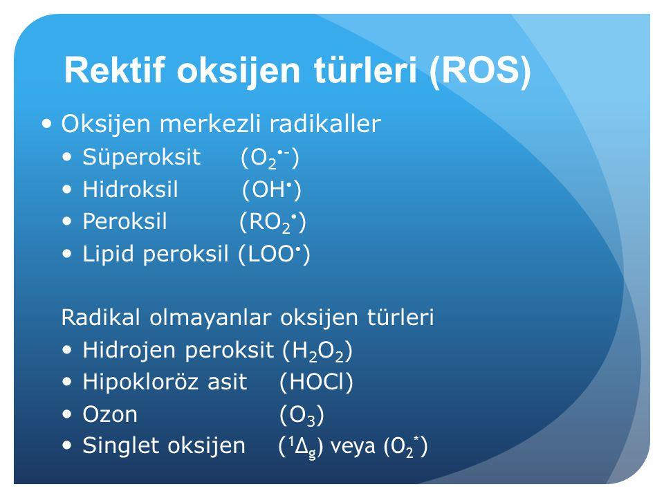Rektif oksijen türleri (ROS)