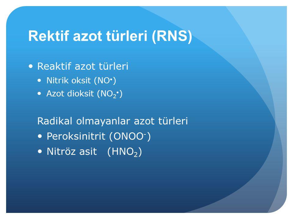 Rektif azot türleri (RNS)