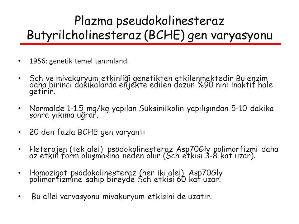 Plazma pseudokolinesteraz Butyrilcholinesteraz (BCHE) gen varyasyonu