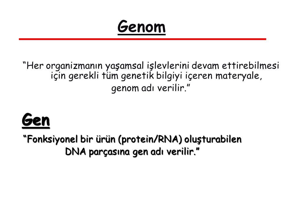 Genom Her organizmanın yaşamsal işlevlerini devam ettirebilmesi için gerekli tüm genetik bilgiyi içeren materyale, genom adı verilir.