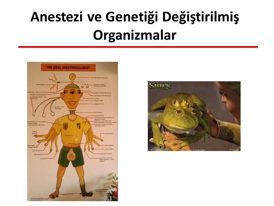 Anestezi ve Genetiği Değiştirilmiş Organizmalar