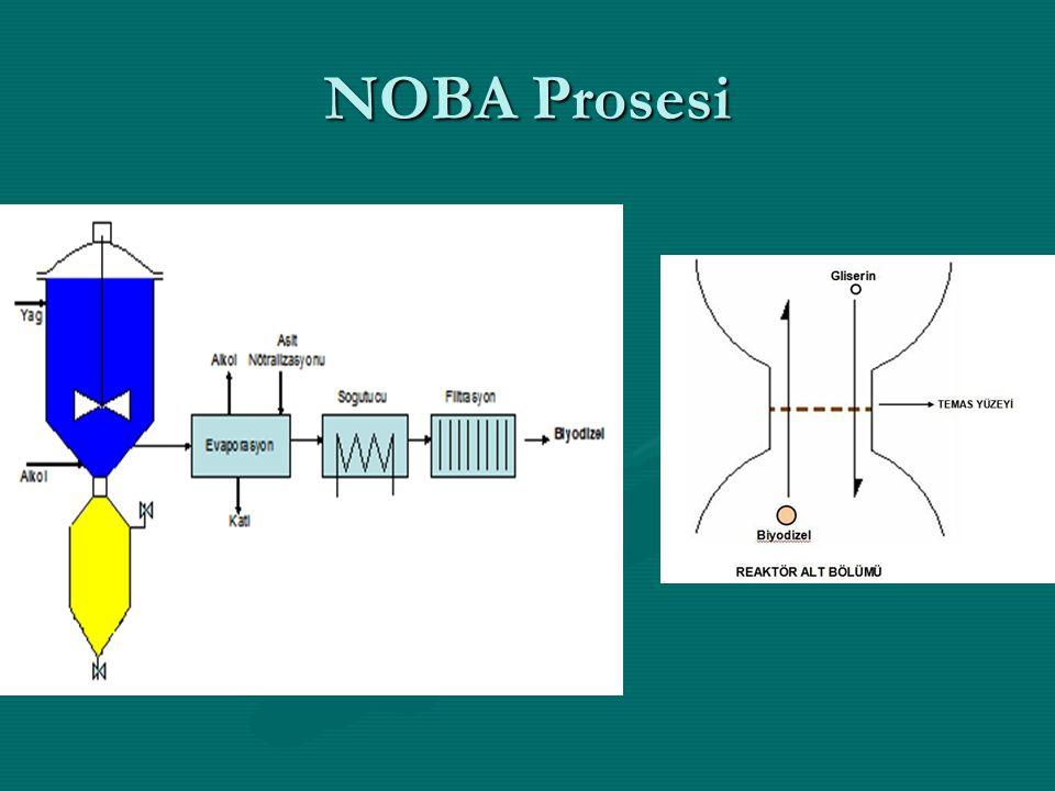 NOBA Prosesi