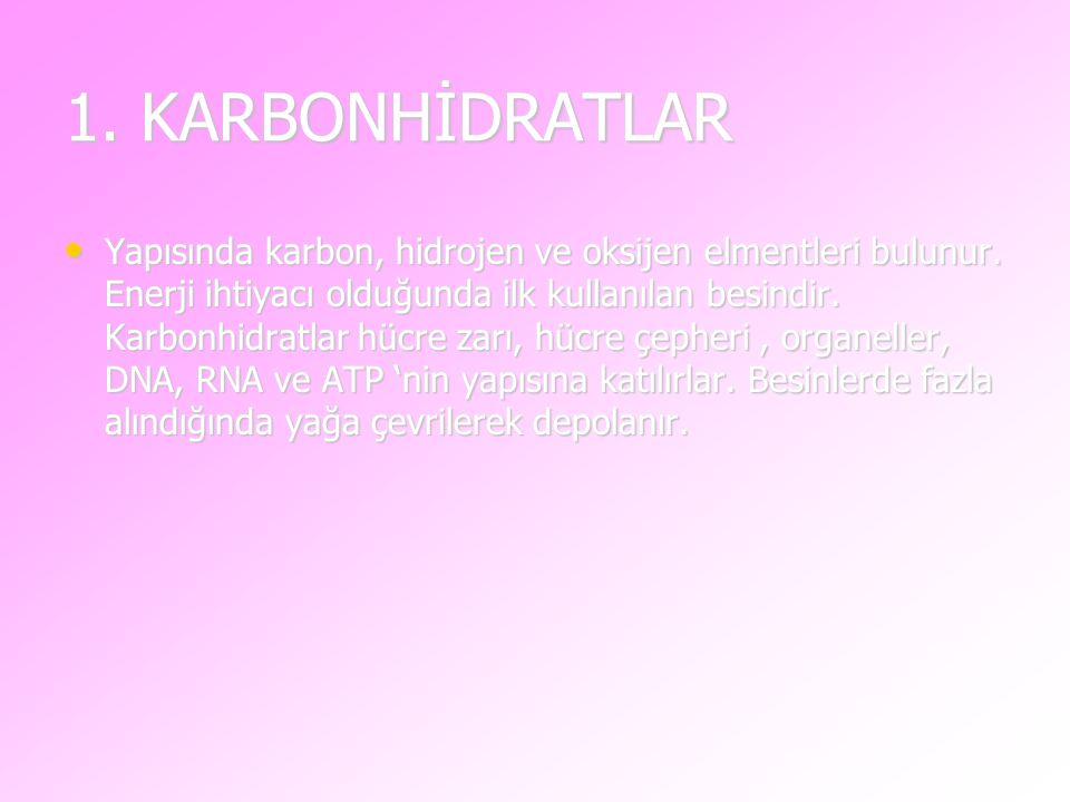 1. KARBONHİDRATLAR