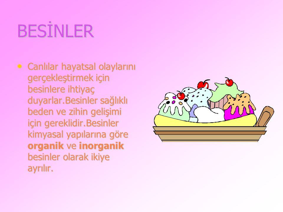 BESİNLER