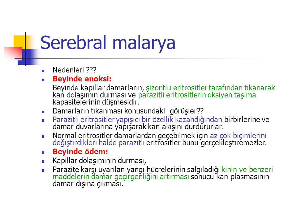 Serebral malarya Nedenleri Beyinde anoksi: