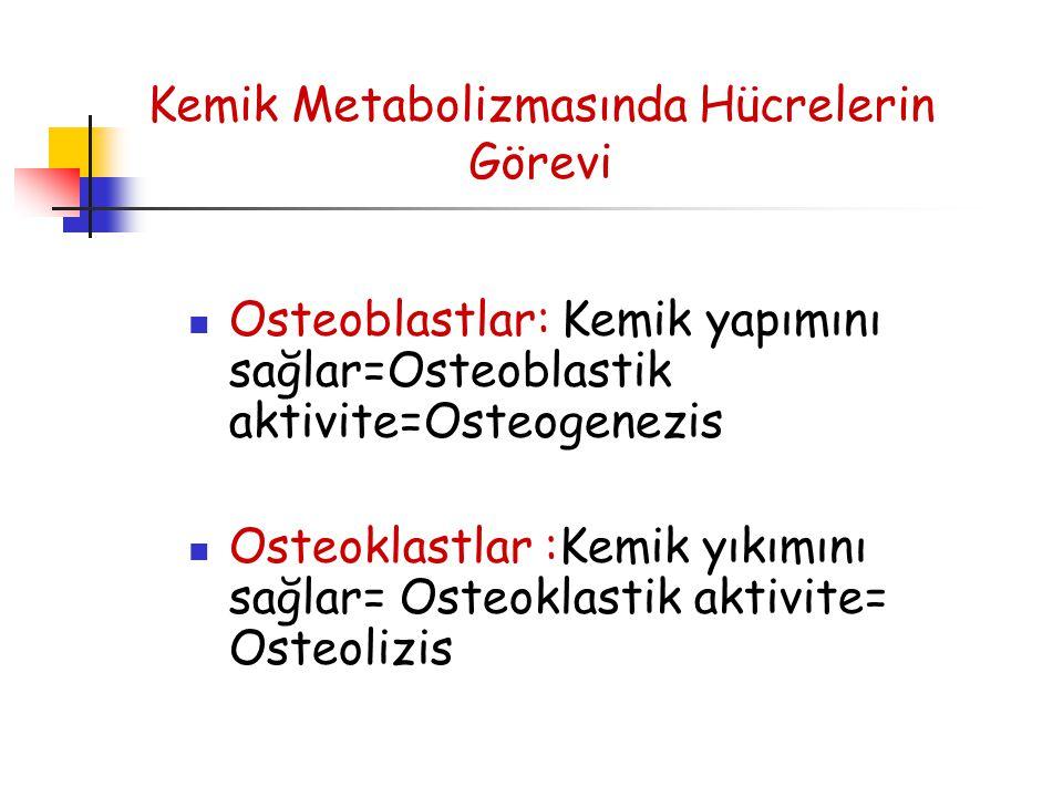 Kemik Metabolizmasında Hücrelerin Görevi