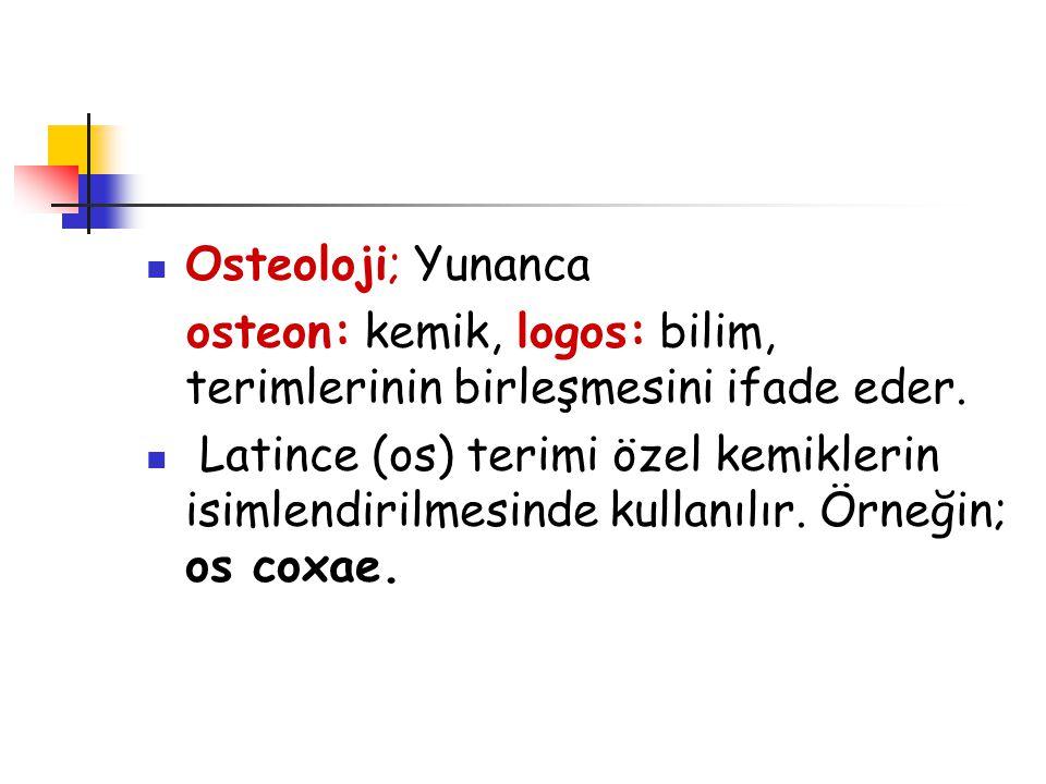 Osteoloji; Yunanca osteon: kemik, logos: bilim, terimlerinin birleşmesini ifade eder.