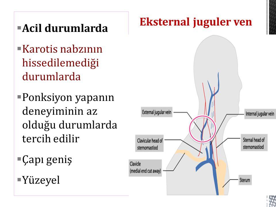 Eksternal juguler ven Acil durumlarda. Karotis nabzının hissedilemediği durumlarda.