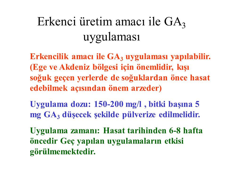 Erkenci üretim amacı ile GA3 uygulaması