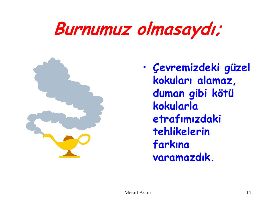 Burnumuz olmasaydı; Çevremizdeki güzel kokuları alamaz, duman gibi kötü kokularla etrafımızdaki tehlikelerin farkına varamazdık.