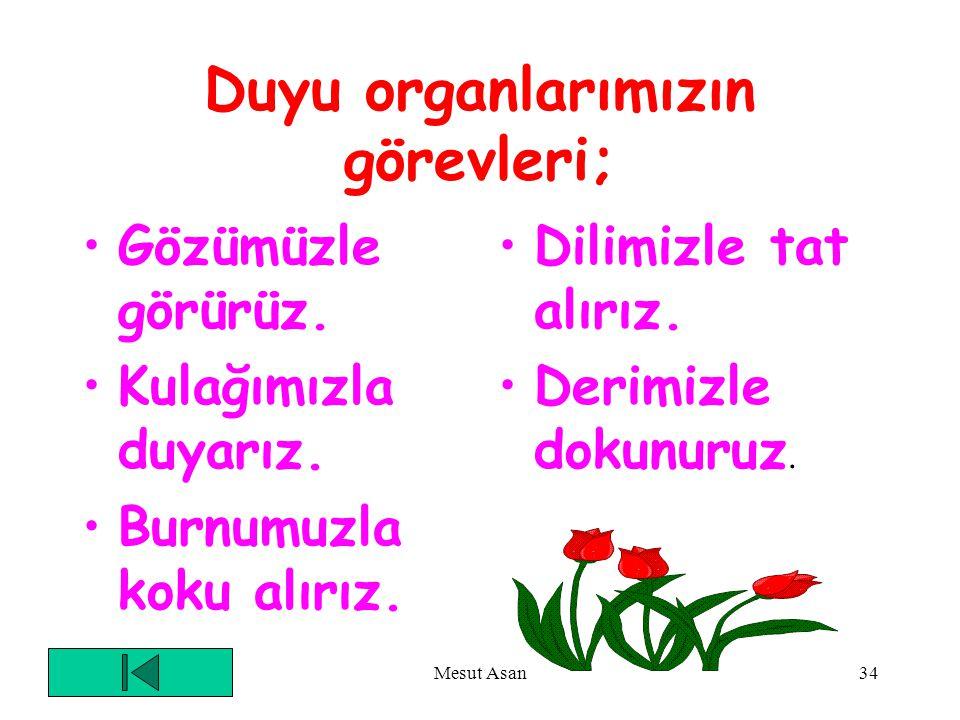 Duyu organlarımızın görevleri;