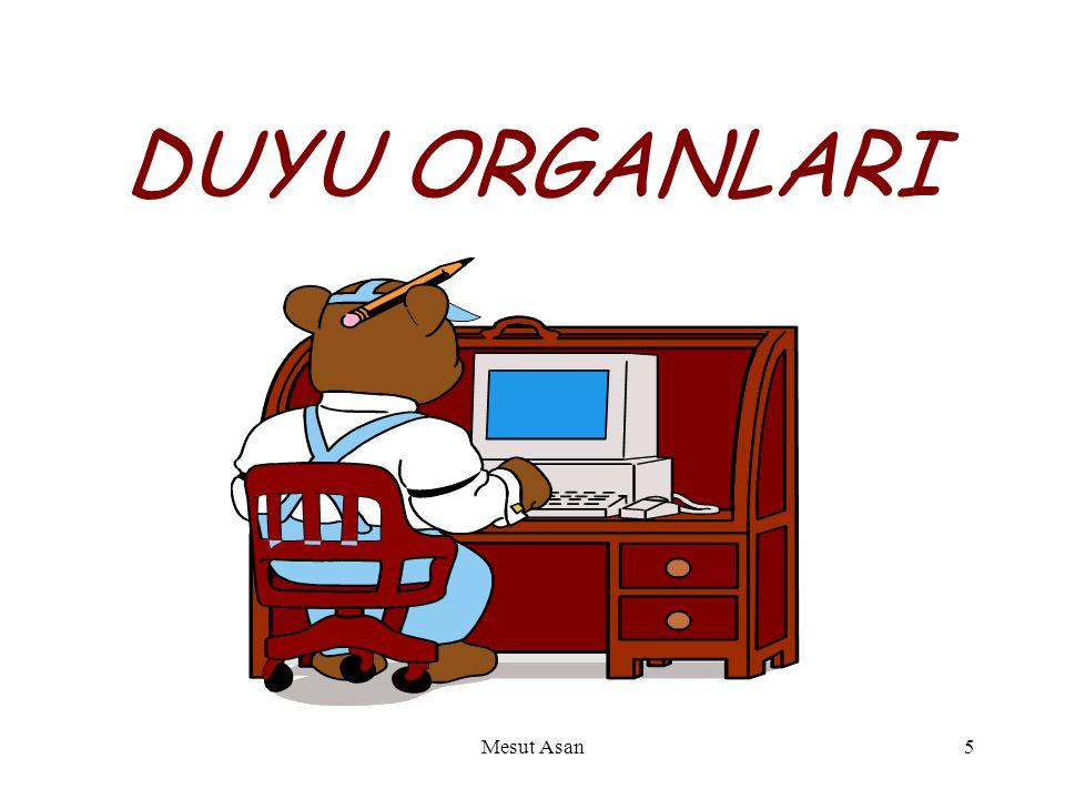 DUYU ORGANLARI Mesut Asan