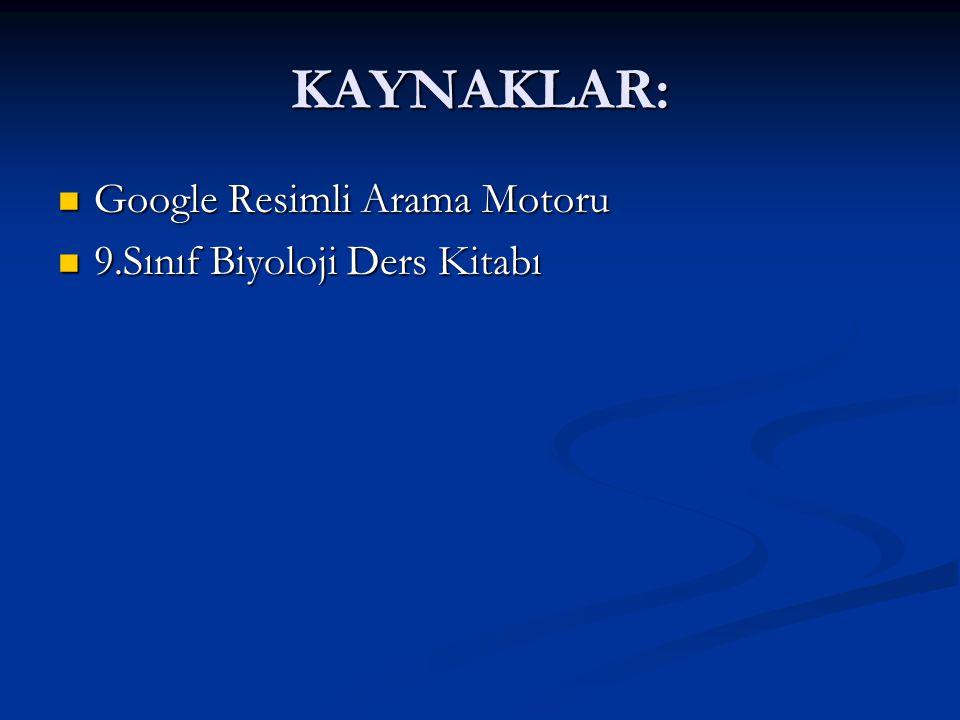 KAYNAKLAR: Google Resimli Arama Motoru 9.Sınıf Biyoloji Ders Kitabı