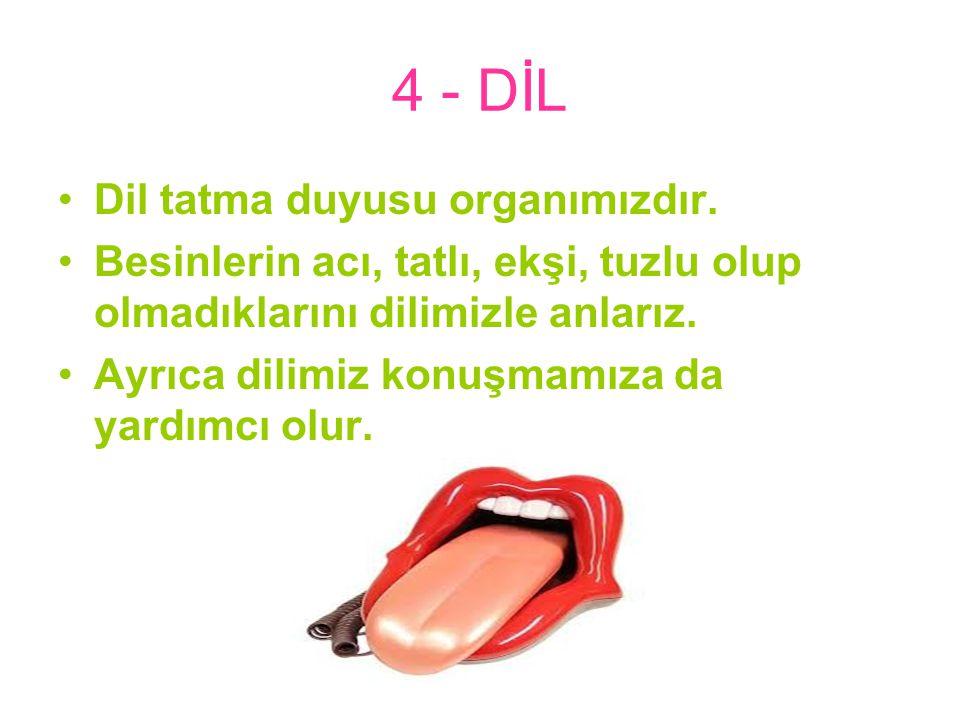 4 - DİL Dil tatma duyusu organımızdır.