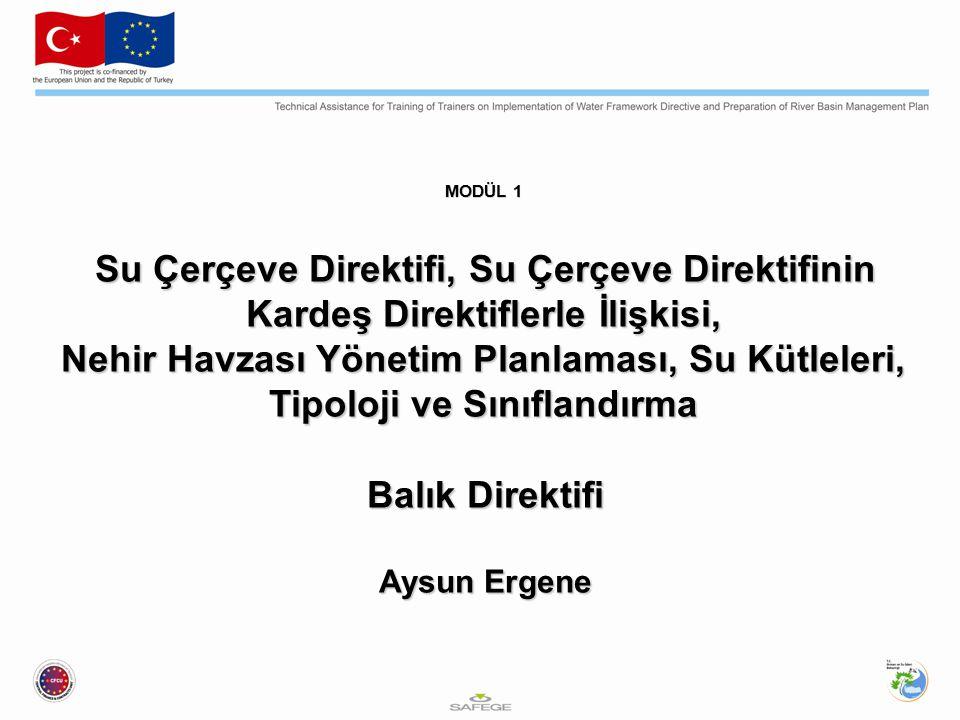 MODÜL 1 Su Çerçeve Direktifi, Su Çerçeve Direktifinin Kardeş Direktiflerle İlişkisi,